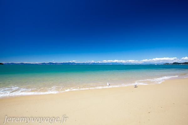 Plage le long d'Abel Tasman Coast Track